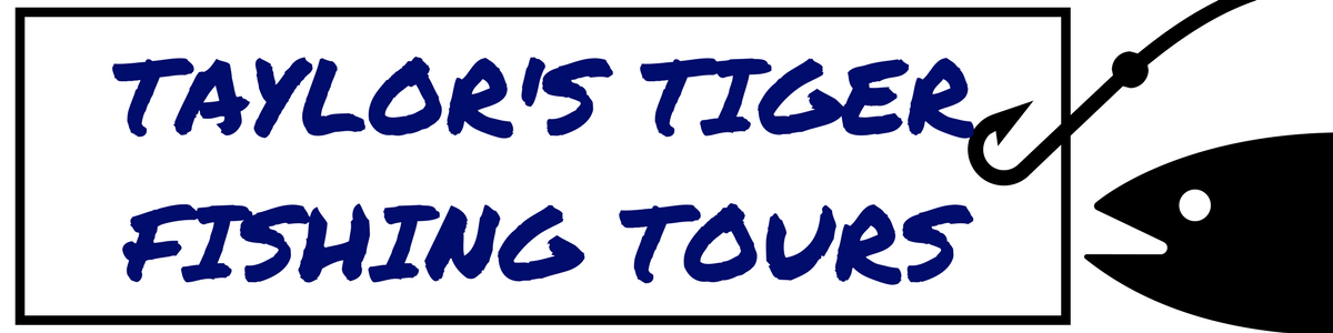 Taylor's Tiger Fishing Tours